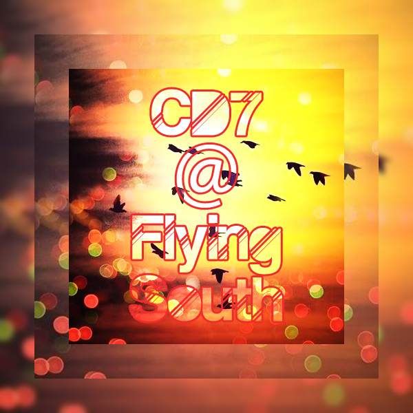 CD7-flying-south